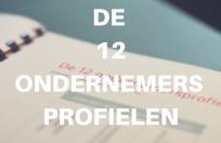 Workshop-voor-ondernemers-de-12-ondernemerspfofielen